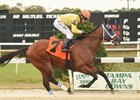 World of Trouble rolled to an easy win Jan. 20 in the Pasco Stakes at Tampa Bay Downs.