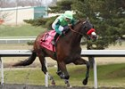 Blended Citizen wins the Jeff Ruby Steaks at Turfway Park