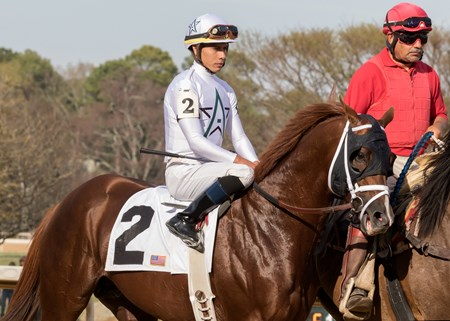 Hedge Fund before winning The Essex Handicap at Oaklawn Racing March 17, 2018, jockey Jose Ortiz up
