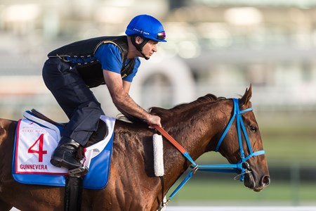 Gunnevera - Meydan - March 25, 2018