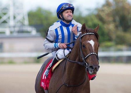 Bravo Named Jockeys And Jeans Ambassador Bloodhorse