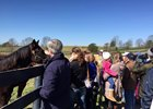 Meeting yearlings at Mill Ridge Farm during the Meet the NEIGHbors event