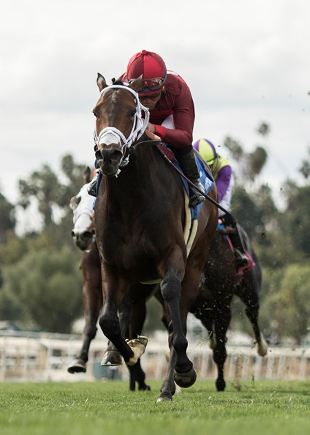 River Boyne and jockey Joel Rosario win the $200,000 Pasadena Stakes Saturday, March 17, 2018 at Santa Anita Park, Arcadia, CA.
