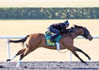 A filly by Concord Point led a group of eight that breezed an eighth-mile in :09 4/5