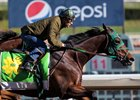 Bolt d'Oro works under Victor Espinoza at Santa Anita Park