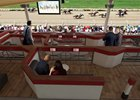 Lounge boxes planned for The Stretch area at Saratoga Race Course
