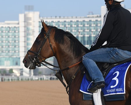 Economic Model, Godolphin Mile, Dubai World Cup 2018, Meydan UAE