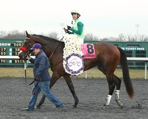 Blended Citizen after winning the March 17 Jeff Ruby Steaks (G3) at Turfway Park.