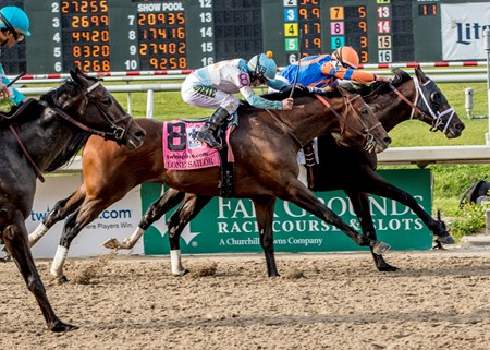 3-24-2018  -  Noble Indy with John Velazquez aboard gets a head in front of Lone Sailor to win the 105th Grade II Louisiana Derby at Fair Grounds.