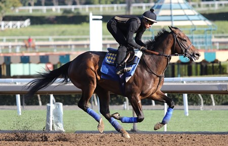 McKinzie - Santa Anita, March 1, 2018