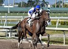 Coach Rocks wins the Gulfstream Park Oaks