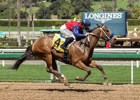 Miss Sunset and jockey Mike Smith win the $100,000 Irish O'Brien Stakes, Saturday, March 17, 2018 at Santa Anita Park, Arcadia CA.