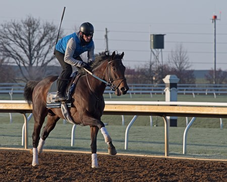 Rodolphe Brisset on Quip  Morning works, gallops and training scenes at Keeneland in Lexington, Ky. April 5, 2018 Keeneland in Lexington, Kentucky.