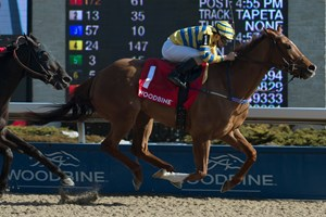 Pink Lloyd speeds to his second consecutive victory in the Jacques Cartier Stakes at Woodbine