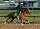 Hofburg was the only Kentucky Derby challenger to put in an official work Sunday morning at Churchill Downs
