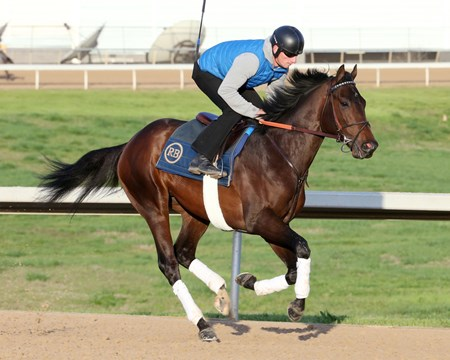 Quip - Oaklawn Park - Gallop - April 9, 2018