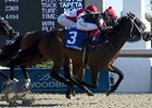 Silent Sting wins the Queenston Stakes at Woodbine