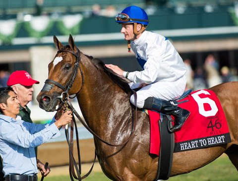Heart to Heart Will Not Race in 2018 Breeders' Cup