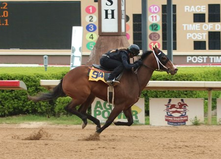 A Bind filly consigned as Hip 94 works for the Texas Thoroughbred Association's 2-year-olds in training sale