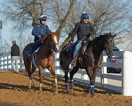 Good Magic Morning works, gallops and training scenes at Keeneland in Lexington, Ky. April 5, 2018