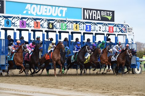 Nyra Announces Aqueduct Stakes Schedule Bloodhorse