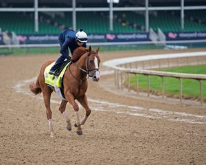 Champion Good Magic has settled in at Churchill Downs