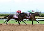 Mucho Amor holds on by a neck to win her first start at Keeneland