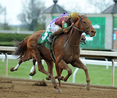 April 14, 2018 Rated R Superstar, Javier Castellano up, wins the Gr.3 Ben Ali Stakes at Keeneland