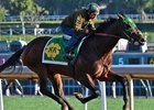 Bolt d'Oro works seven furlongs at Santa Anita Park