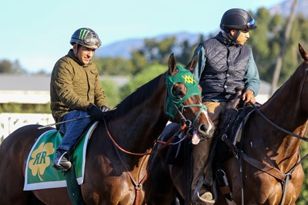 Bolt d'Oro - Santa Anita - April 22, 2018 Free for BloodHorse editorial usage based on editorial flat-rate assignment