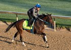 Combatant prepares to work April 30 at Churchill Downs