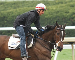 Daddys Lil Darling, who has never won at Keeneland, will try 12 furlongs for the first time in the Bewitch Stakes