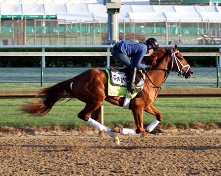 Vino Rosso on the track at Churchill Downs on April 30, 2018