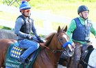 Solomini will head to the Arkansas Derby as the morning-line second choice