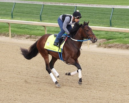 Combatant - Gallop - Churchill Downs - 042218