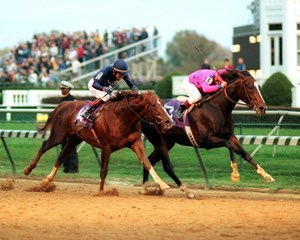 Tiznow wins The Breeders Cup Classic from Giant's Causeway