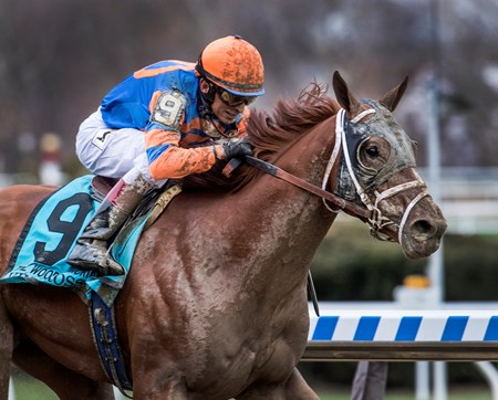 Vino Rosso with jockey John Velazquez wins the 94th running of The Wood Memorial at Aqueduct Saturday April 7, 2018 in Ozone Park, N.Y.