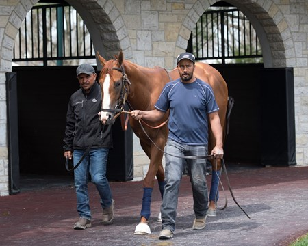 Good Magic Schooling at Keeneland on opening day April 6, 2018 Keeneland in Lexington, Kentucky.