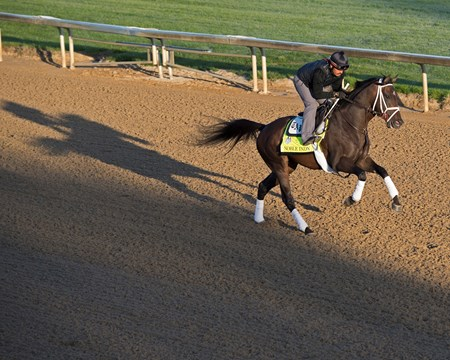 Noble Indy works at Churchill Downs