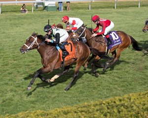 One Go All Go wins the Elkhorn Stakes at Keeneland