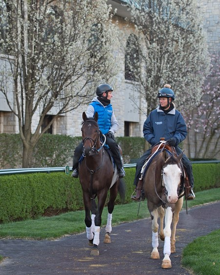 Trainer Rodolphe Brisset on Quip in the paddock with stable pony Jonas and his wife Brooke Baker Brisset Morning works, gallops and training scenes at Keeneland in Lexington, Ky. April 5, 2018 Keeneland in Lexington, Kentucky.