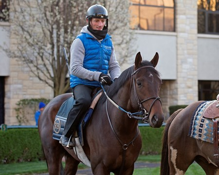Trainer Rodolphe Brisset on Quip in the paddock Morning works, gallops and training scenes at Keeneland in Lexington, Ky. April 5, 2018 Keeneland in Lexington, Kentucky.