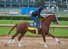 Free Drop Billy gallops ahead of the Kentucky Derby at Churchill Downs