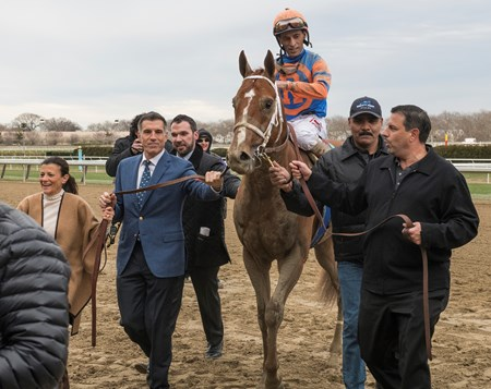 Vino Rosso with jockey John Velazquez is lead to the winner's circle by owner Teresa and Vince Viola, left and Mike Repole, right. and Mrs wins the 94th running of The Wood Memorial at Aqueduct Saturday April 7, 2018 in Ozone Park, N.Y.