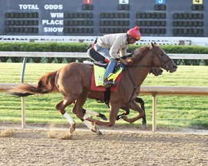 Flameaway, working at Churchill Downs