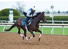 Rushing Fall gallops at Keeneland April 3