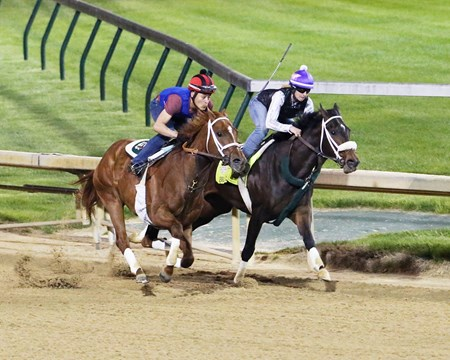 Bravazo (inside) works with Berko at Churchill Downs.