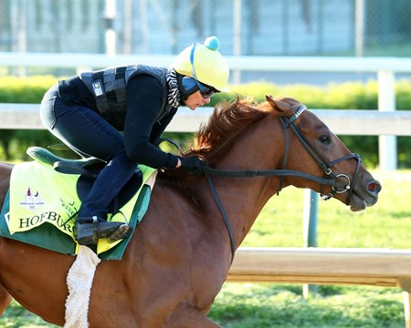 Hofburg - Churchill Downs - Work - 042918