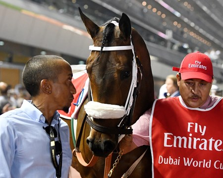 Forever Unbridled - 2018 Dubai World Cup