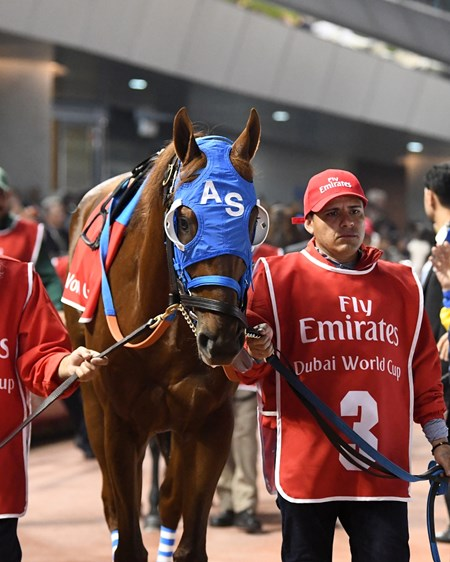Gunnevera - 2018 Dubai World Cup